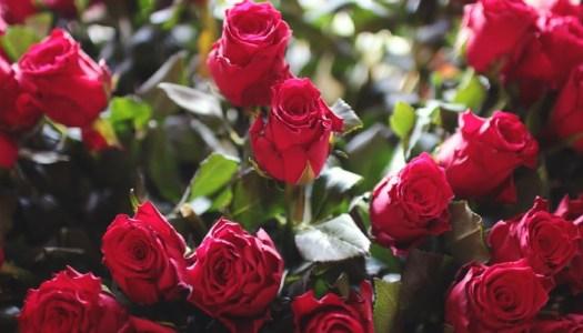 Thoroughly Modern Mammy – Valentine me