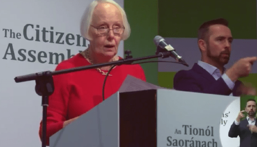 Citizens' Assembly recommend that termination should be allowed in the case of rape