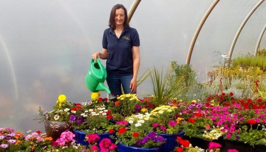 Me and My Business: The beauty that blooms at Dunwiley Nurseries