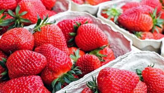 Like strawberries? You'll love this fruity festival