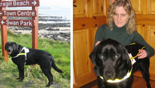 Jennifer's dream to change a life, just as a special dog changed hers