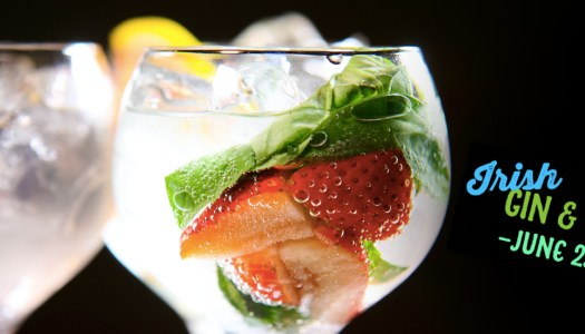 Donegal is GINegal for the Irish Gin & Tonic Fest