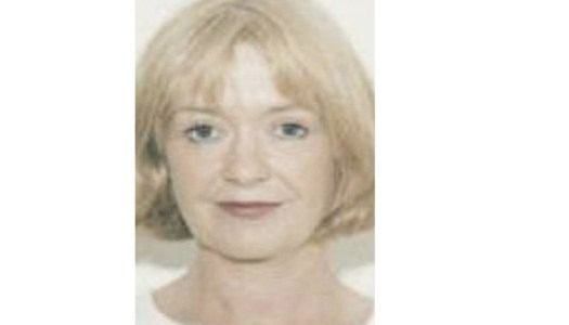 Search for missing woman continues at Donegal site