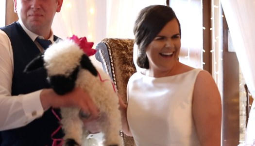 Have you 'herd' about this Donegal wedding surprise?