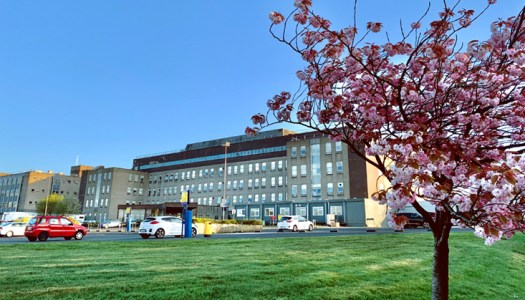 Serious failures with gynae services in Letterkenny uncovered in damning report