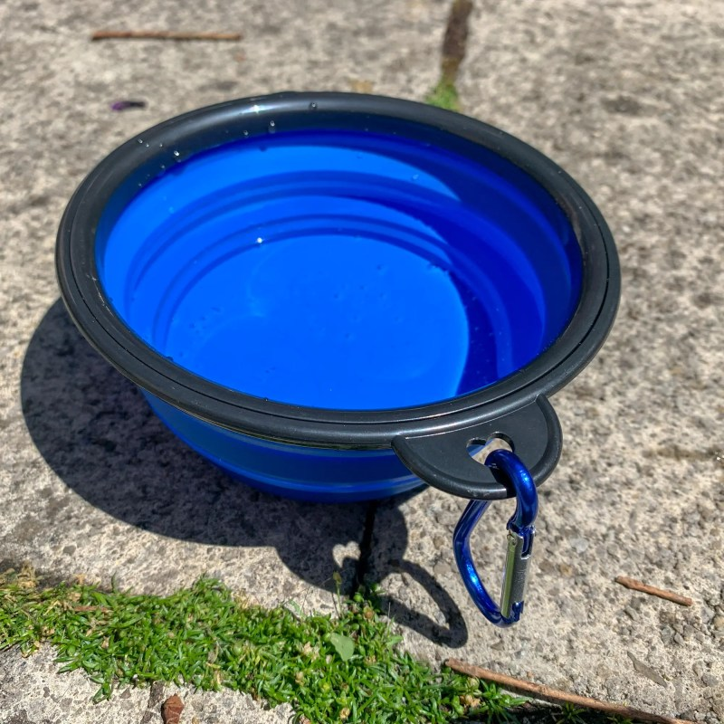 Silicone Folding Collapsible Don Bowl with Water