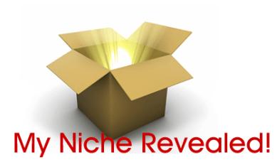 niche-site-revealed