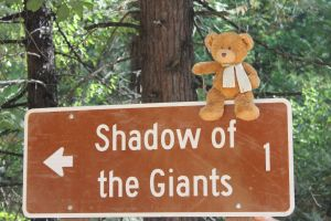 Shadow of the Giants