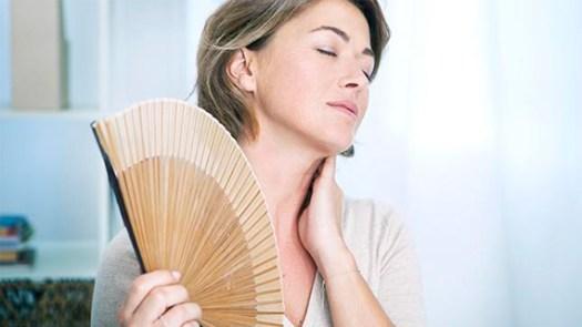 Risultati immagini per menopausa