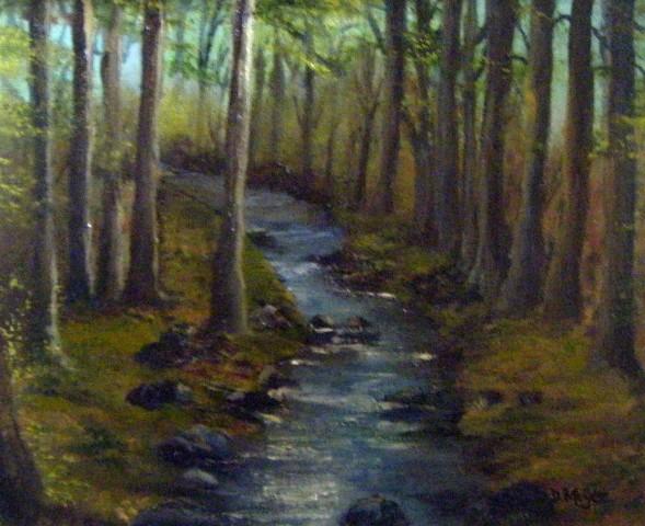 The Dodder river walk, dublin river, irish countryside