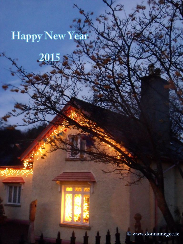 Happy New Year from Donna McGee Fine Art