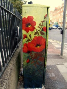 Blooming Poppies at Poppy Corner, Dublin