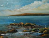 iRISH LANDSCAPSE ART Chilling with the Breeze 8x10 inches - Oil on Canvas Seagull on rocks