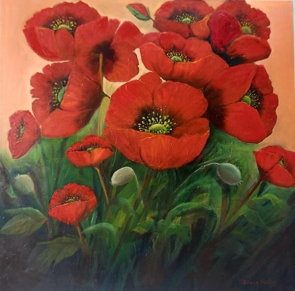 Garden Poppies 28x28 inches oil on canvas irish landscape