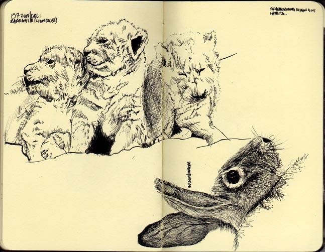 cubs & bunny