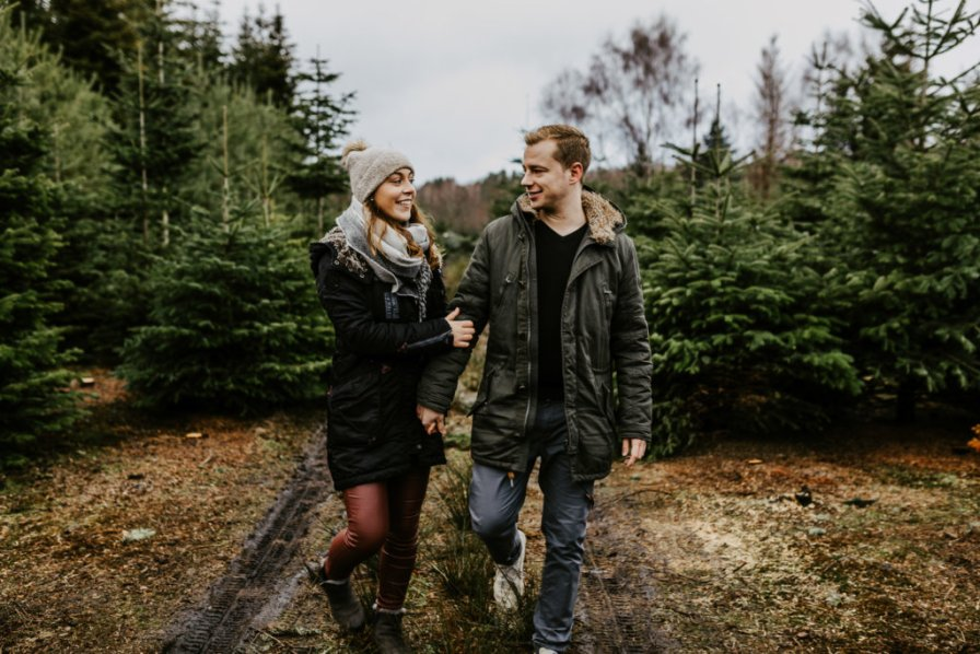 Paarfotos in der Weihnachtsbaum-Plantage