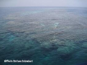 Sha'ab Ruumi Reef