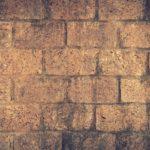 A Wall prevents progress