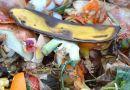 Évente 68 kg élelmiszer hulladékot termelünk háztartásonként