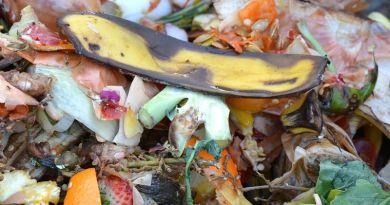 Globális felhívás az élelmiszerpazarlás ellen