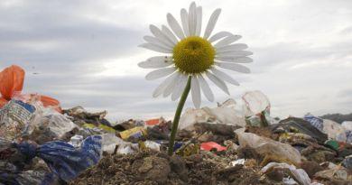 Szerbia Európa egyik legszennyezettebb országa