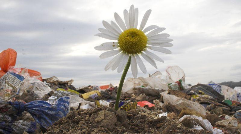 Ahol a hulladék 98 %-át hasznosítják