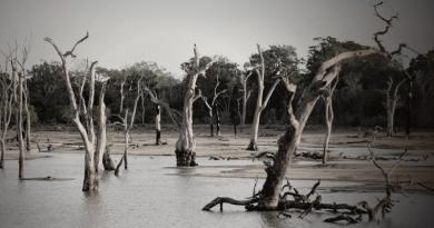 Elkezdődött a globális vízválság