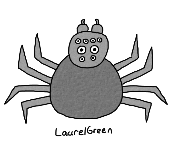 a drawing of a black spider