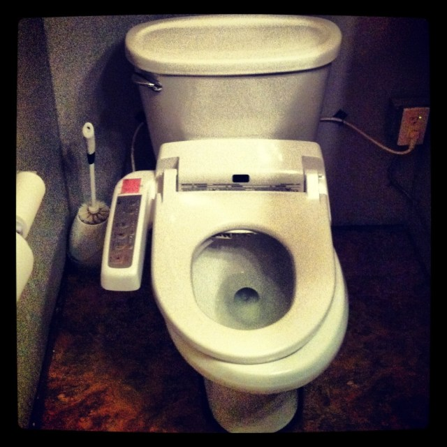 luxury toilet seat with built in bidet and heated seat