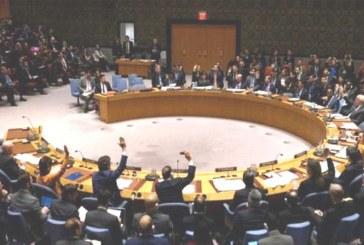 सैयद अकबरुद्दीन: पाकिस्तान के प्रतिनिधि द्वारा कश्मीर में खतरे की स्थिति को नकार दिया गया