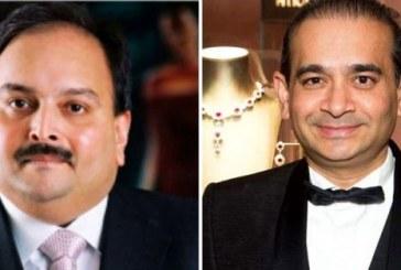 ED brings Nirav Modi, Mehul Choksi's jewellery worth Rs 1350 crore to India