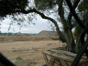 construction from east dirt and trees