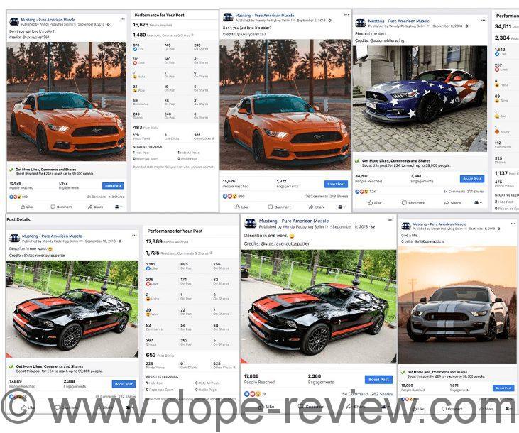 WP ProfitLinks Review