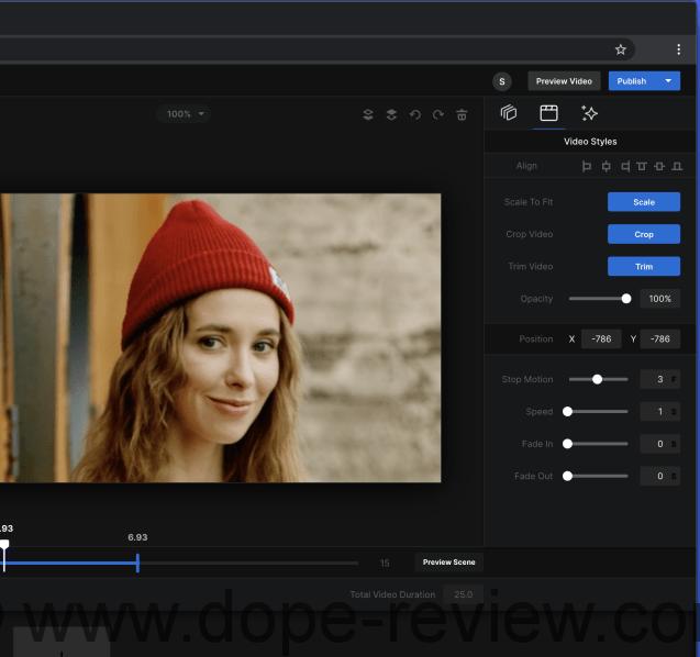 VideoFlow Review