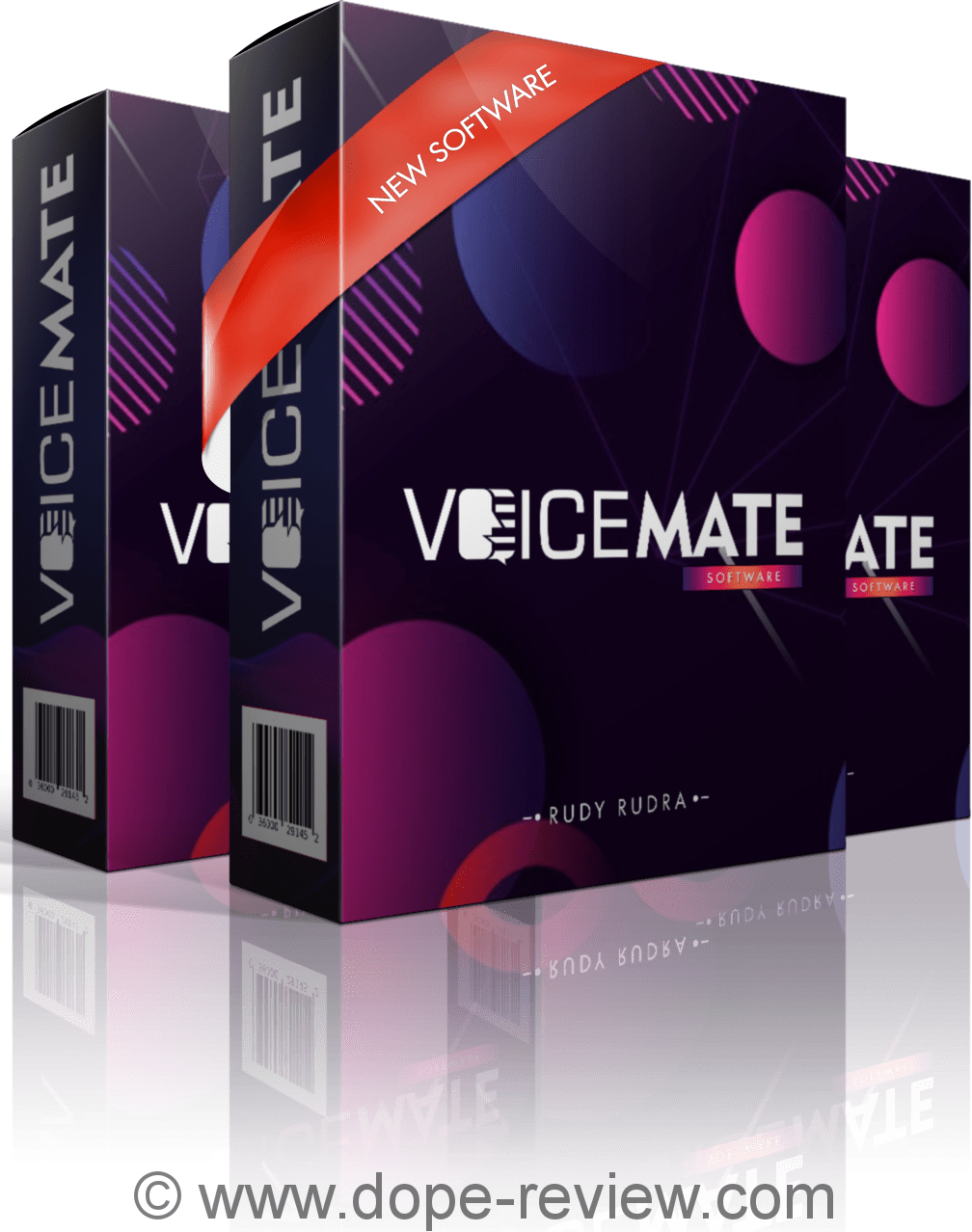 VoiceMate Review