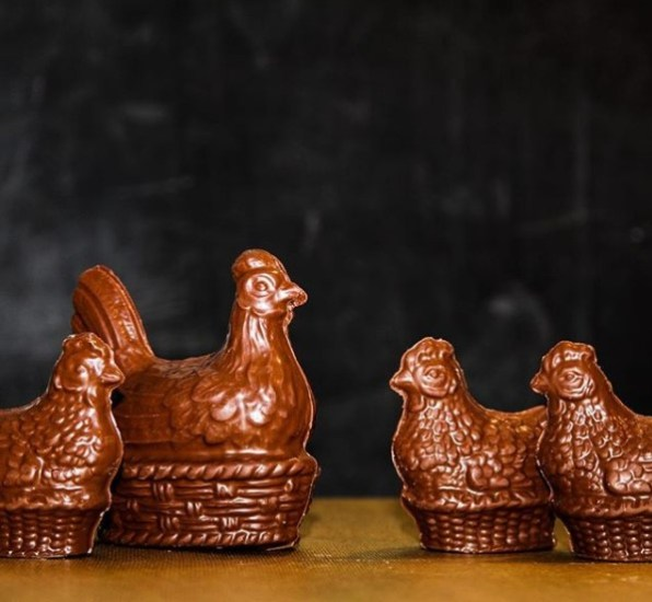 pascuas-cauca-gallinitas