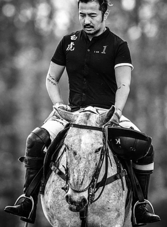 Kylin-caballo