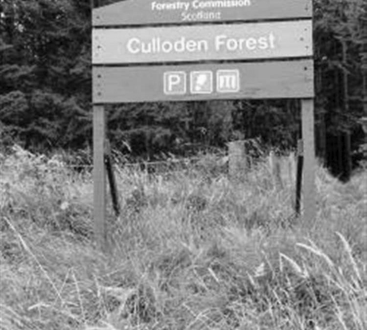 Forestry commission 1982 b&w | Doric Future