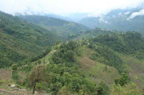 Ridge view.