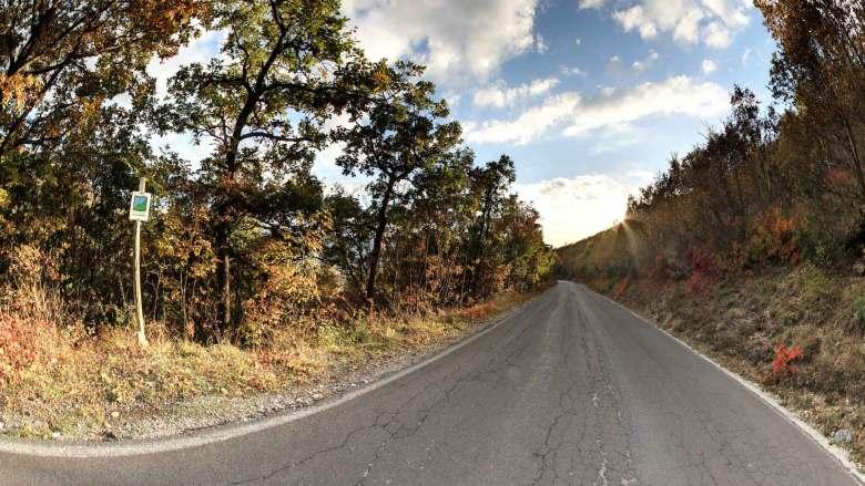 Passeggiate in autunno nei boschi colorati