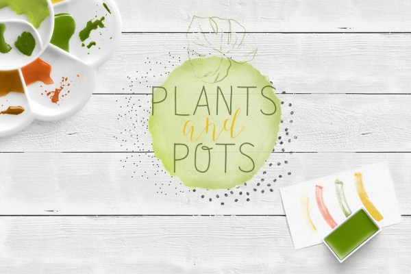 Pflanzen malen Titel