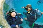 003637 Mooloolaba Underwater World