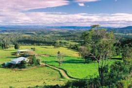 003978 Blackall Range Montville Landscape
