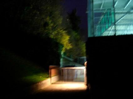 Lichtung III, 2008