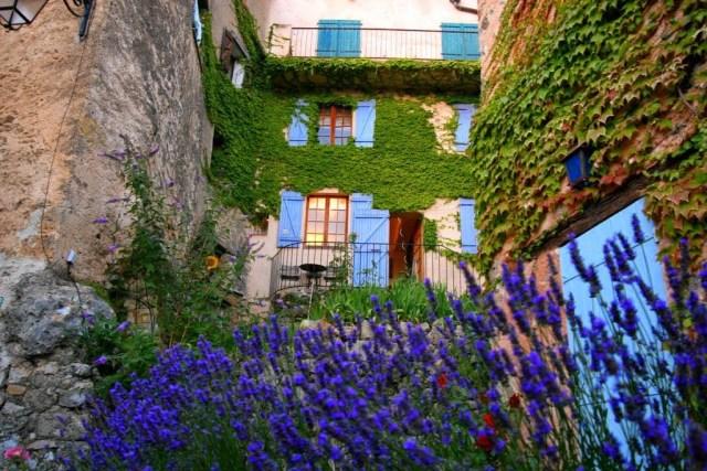 Huis met lavendel in het dorpje Tourtour in Frankrijk