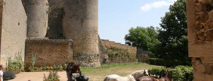 Semur-en-Brionnais-bourgondie-kasteel-paarden-dorp-1000