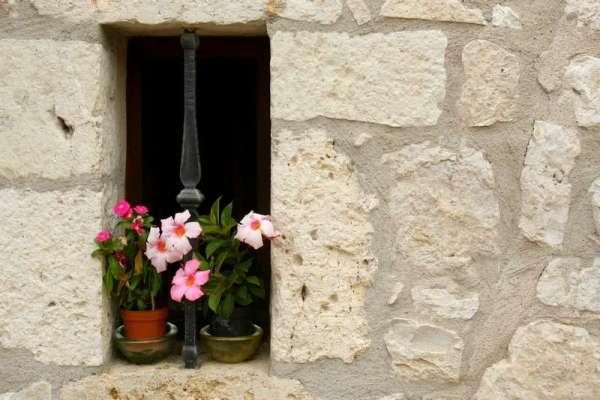 Pujols-le-Haut-Aquitani-C3-AB-Lot-bloemen