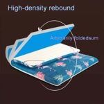 Tapis de sol Tatami de style japonais, matelas pliable pour étudiant, matelas futon Tatami pliable, coussinets doux et épais pour dortoirs simples et doubles (taille : 120 x 200 cm, couleur : F)