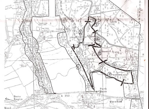 Black and whtie map with the route of the walk highlighted