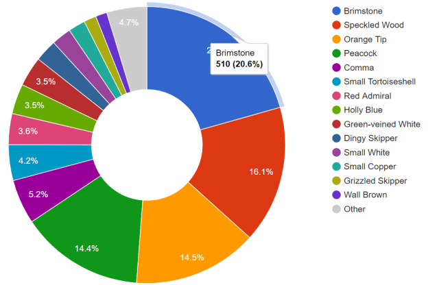 Pie chart showing most-recorded butterfly species